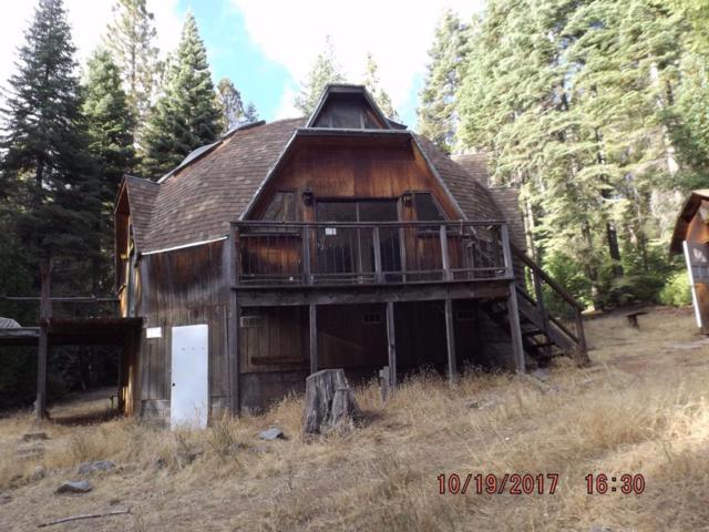 26641 High Trees Drive, Pioneer, CA 95666 (MLS #18007837) :: Keller Williams - Rachel Adams Group