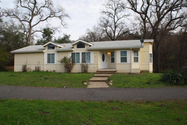 9551 Highway 49, Sonora, CA 03919 (MLS #18008440) :: Keller Williams - Rachel Adams Group