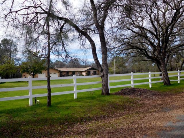 1736 Carl Road, Rescue, CA 95672 (MLS #18009124) :: Keller Williams - Rachel Adams Group