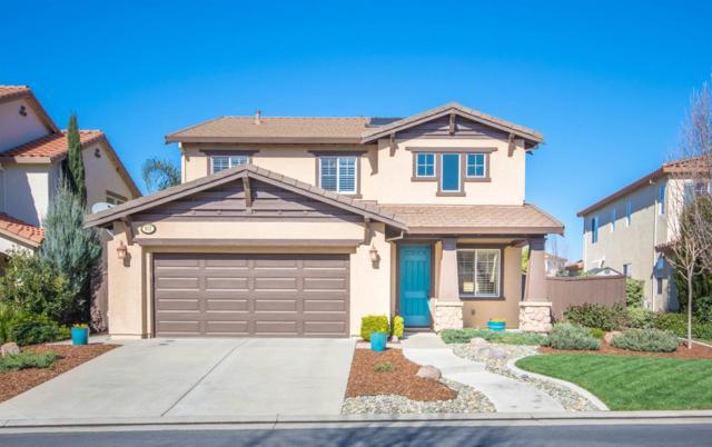 117 Laysan Teal Court, Roseville, CA 95747 (MLS #18009150) :: Keller Williams - Rachel Adams Group