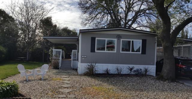 8356 Big Oak Drive, Citrus Heights, CA 95610 (MLS #18010152) :: Dominic Brandon and Team