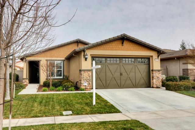 1573 Maple Valley Street, Manteca, CA 95336 (MLS #18010240) :: The Del Real Group