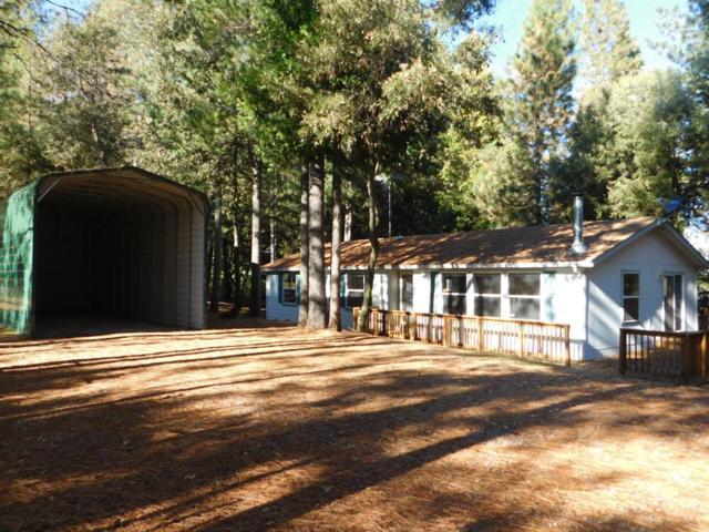 19051 E Pine Drive, Pioneer, CA 95666 (MLS #18010309) :: Dominic Brandon and Team
