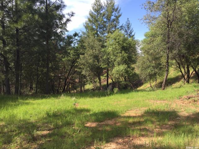 3234 Wasatch Road, Placerville, CA 95667 (MLS #18010374) :: Heidi Phong Real Estate Team