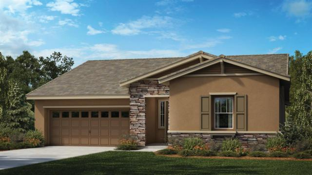 2242 Golden Gate Drive, Tracy, CA 95377 (MLS #18010691) :: The Del Real Group