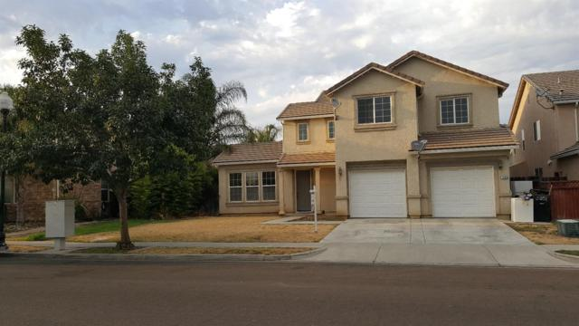 1335 Shearwater Drive, Patterson, CA 95363 (MLS #18010724) :: Dominic Brandon and Team