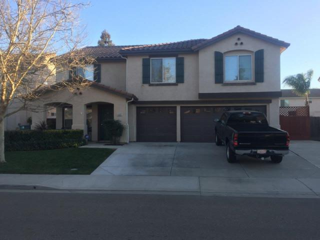 1222 Kestrel Drive, Patterson, CA 95363 (MLS #18011234) :: The Del Real Group