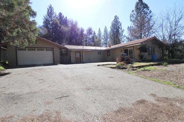 16455 Hale Road, Fiddletown, CA 95629 (MLS #18011361) :: The Merlino Home Team