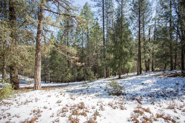 0 Clear Creek Rd, Pollock Pines, CA 95726 (MLS #18013616) :: Dominic Brandon and Team