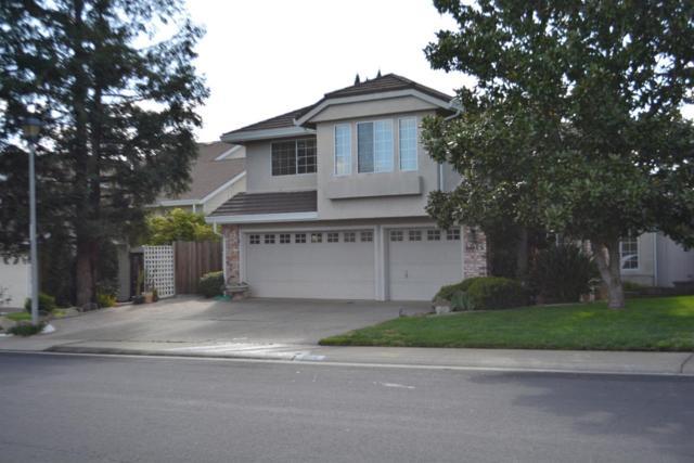 6016 Turquoise Drive, Rocklin, CA 95677 (MLS #18013638) :: Dominic Brandon and Team