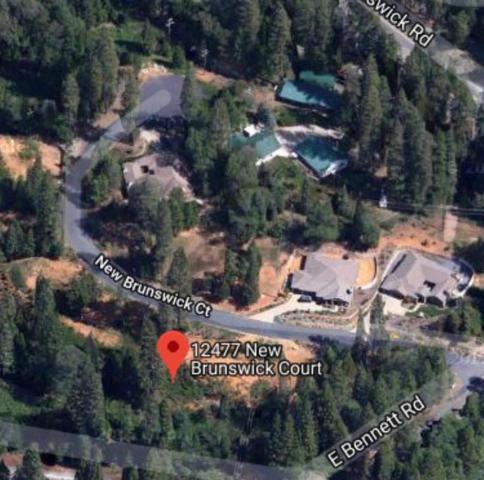 12477 New Brunswick Court, Grass Valley, CA 95945 (MLS #18013837) :: Dominic Brandon and Team