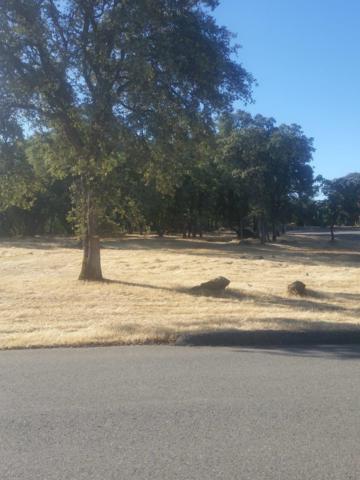 9826 Spyglass Circle, Auburn, CA 95602 (MLS #18013976) :: Heidi Phong Real Estate Team