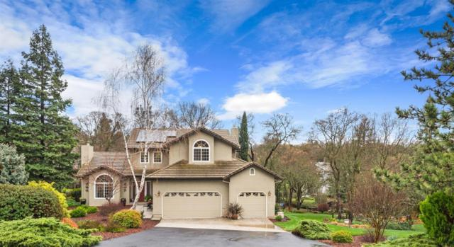 3970 Foothill Oaks Drive, Auburn, CA 95602 (MLS #18014619) :: Dominic Brandon and Team