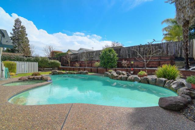 1293 Gold Pan Drive, Roseville, CA 95661 (MLS #18014852) :: Dominic Brandon and Team