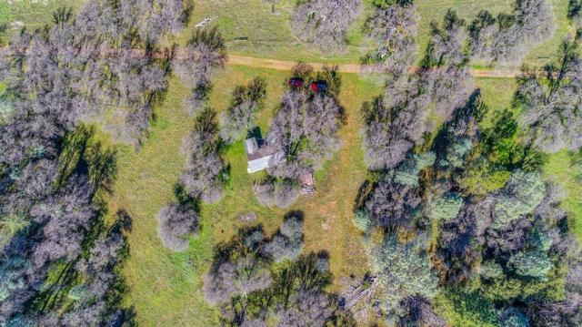 0 Cedar Pines - 26, Fiddletown, CA 95629 (MLS #18015198) :: NewVision Realty Group