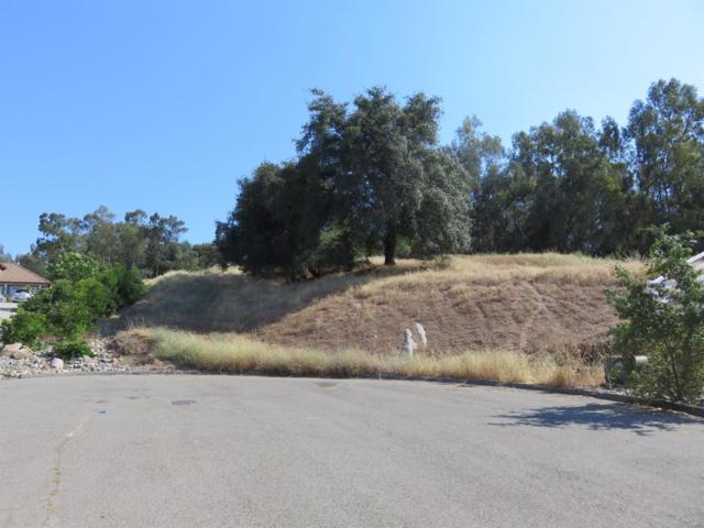 5675 English Colony Way, Penryn, CA 95663 (MLS #18015346) :: Dominic Brandon and Team