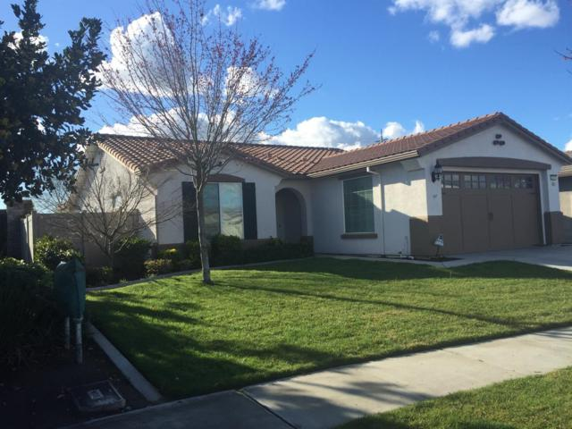 2317 Degroot Lane, Manteca, CA 95336 (MLS #18015519) :: REMAX Executive