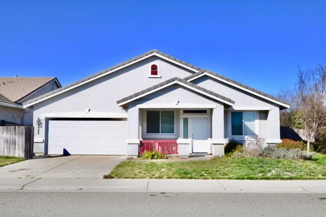 8825 Coral Berry Way, Elk Grove, CA 95624 (MLS #18015524) :: Dominic Brandon and Team