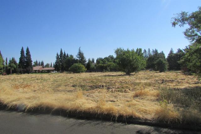 5310 Las Positas Circle, Stockton, CA 95212 (MLS #18015614) :: Dominic Brandon and Team