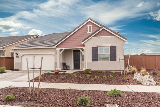 5014 Sycamore Canyon Drive, El Dorado Hills, CA 95762 (MLS #18015954) :: Keller Williams - Rachel Adams Group