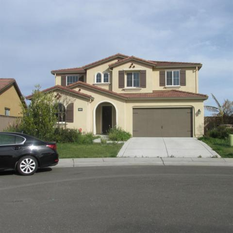 9785 Allen Ranch Way, Elk Grove, CA 95757 (MLS #18016586) :: Heidi Phong Real Estate Team