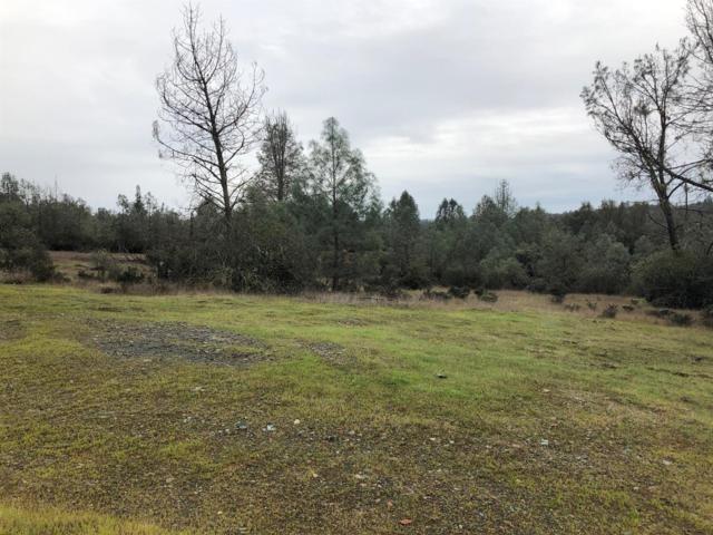 2421 Shingle Springs Drive, Placerville, CA 95667 (MLS #18017782) :: Keller Williams - Rachel Adams Group