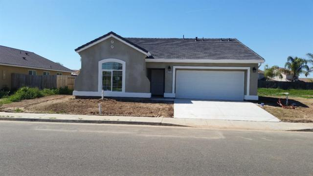 2784 N Drake Avenue, Merced, CA 95348 (MLS #18018479) :: Dominic Brandon and Team