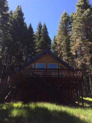1529 Snowflower, La Porte, CA 95981 (MLS #18018554) :: Heidi Phong Real Estate Team