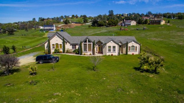 3435 Little John Road, Copperopolis, CA 95228 (MLS #18018610) :: Heidi Phong Real Estate Team