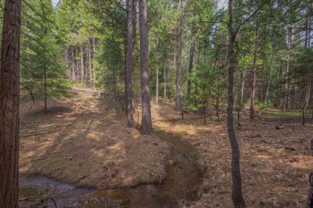 4680 Jenkinson Circle, Pollock Pines, CA 95726 (MLS #18019343) :: NewVision Realty Group