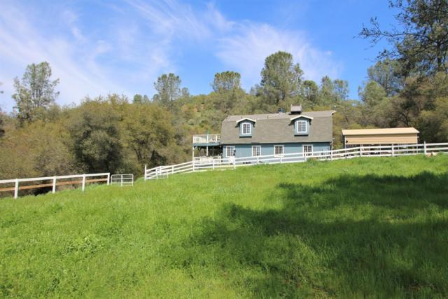 12174 Wahine Drive, Jamestown, CA 95327 (MLS #18019352) :: Team Ostrode Properties