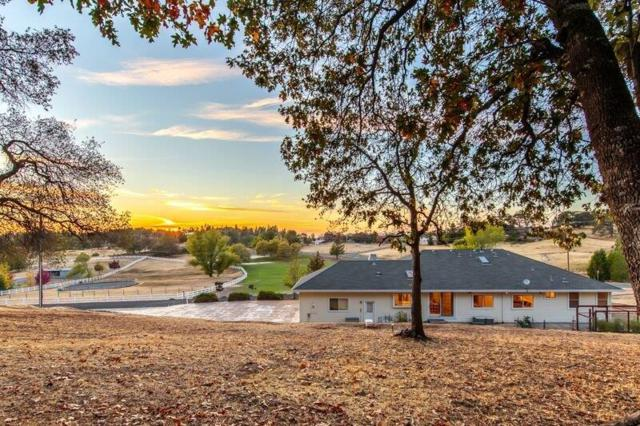 2405 Otter Trail, Cool, CA 95614 (MLS #18021139) :: Dominic Brandon and Team