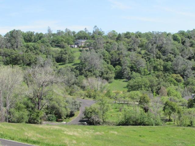10070-Lot 3 Glenview Road, Newcastle, CA 95658 (MLS #18022181) :: Dominic Brandon and Team