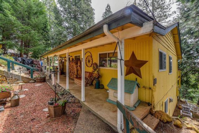 28056 Holiday Lane, Pioneer, CA 95666 (MLS #18022440) :: Keller Williams - Rachel Adams Group