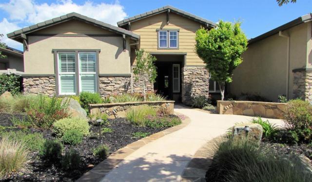 2484 Ashbridge Lane, Manteca, CA 95336 (MLS #18022868) :: REMAX Executive