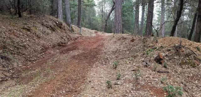 15033 Brooks Road, Grass Valley, CA 95945 (MLS #18022951) :: Keller Williams - Rachel Adams Group