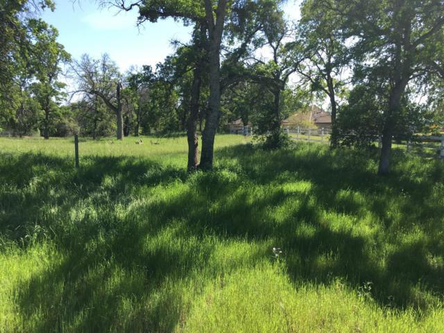 1083 Molina Street, La Grange Unincorp, CA 95329 (MLS #18023088) :: NewVision Realty Group