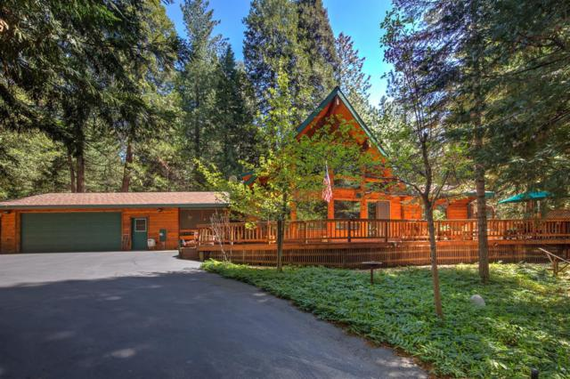 20200 Kit Ct., Volcano, CA 95689 (MLS #18023244) :: Heidi Phong Real Estate Team