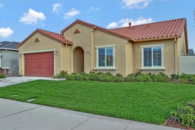 1492 Chestnut Hill Drive, Manteca, CA 95336 (MLS #18023297) :: REMAX Executive