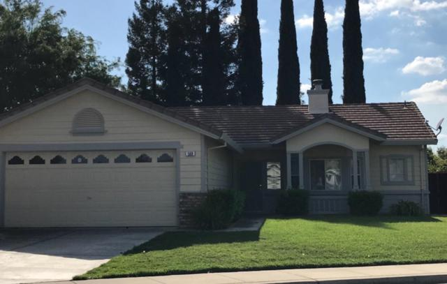 568 View Point Avenue, Oakdale, CA 95361 (MLS #18023450) :: Dominic Brandon and Team