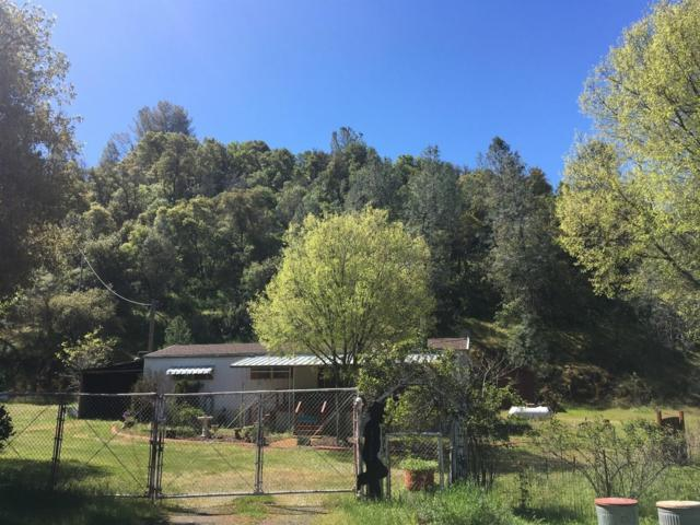 4792 State Highway 132, Coulterville, CA 95311 (MLS #18023562) :: Dominic Brandon and Team