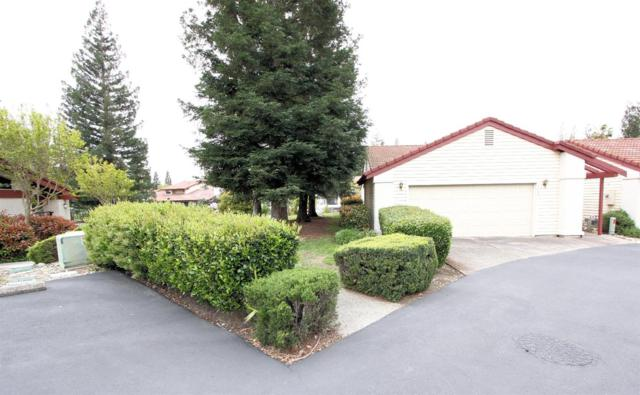 4826 El Cortez Drive, Rocklin, CA 95677 (MLS #18023890) :: Dominic Brandon and Team