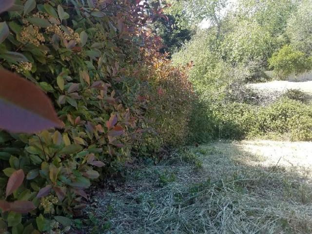 104 Black Powder Circle, Folsom, CA 95630 (MLS #18023945) :: Team Ostrode Properties