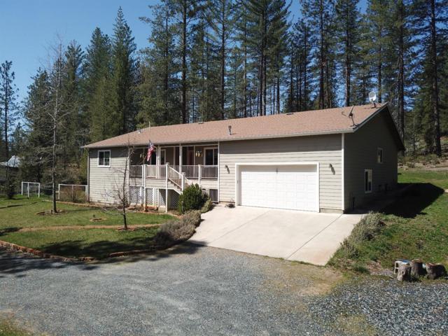 10325 E Park Circle Drive, Coulterville, CA 95311 (MLS #18023955) :: Keller Williams - Rachel Adams Group