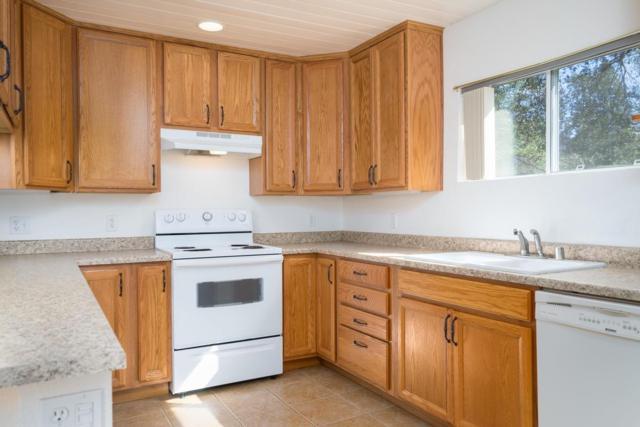 15833 Pioneer Creek, Pioneer, CA 95666 (MLS #18024109) :: Keller Williams - Rachel Adams Group