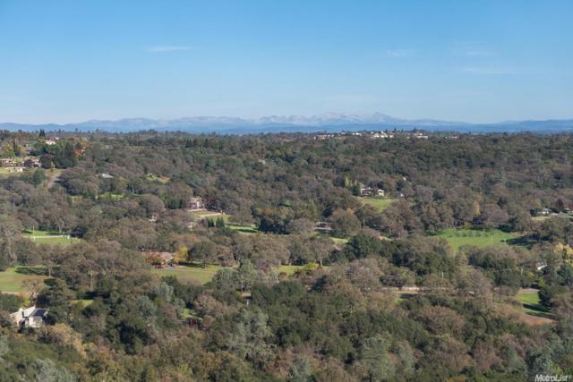 1 Native Lane, Cameron Park, CA 95682 (MLS #18024153) :: Heidi Phong Real Estate Team