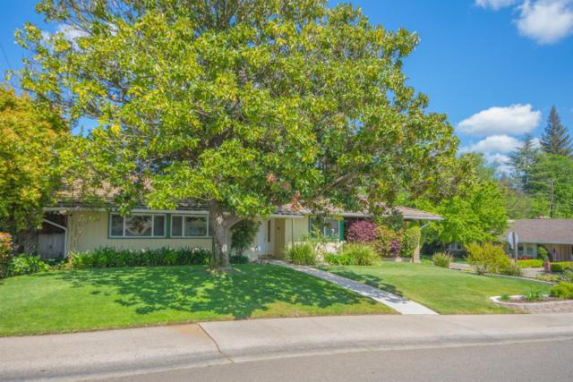 7781 Palmyra Drive, Fair Oaks, CA 95628 (MLS #18024466) :: Ben Kinney Real Estate Team