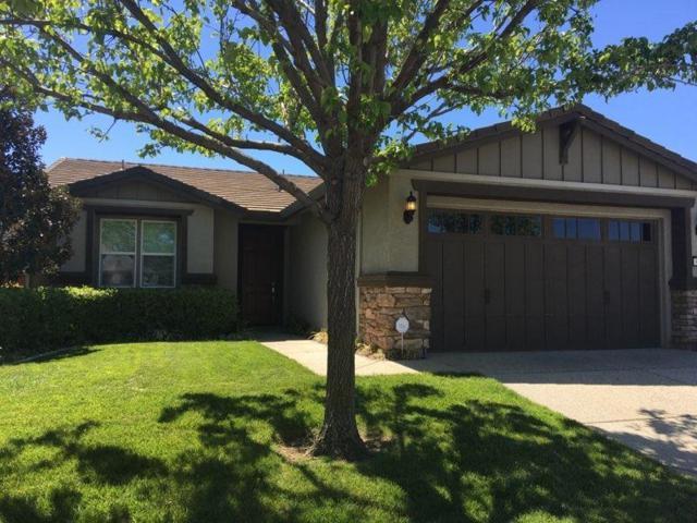 9629 Oakham Way, Elk Grove, CA 95757 (MLS #18024571) :: Dominic Brandon and Team