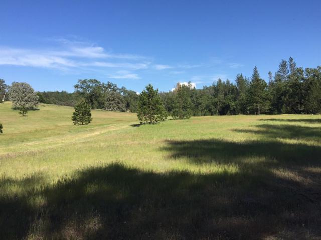 0 Blackhawk Lane, Placerville, CA 95667 (MLS #18024723) :: Team Ostrode Properties