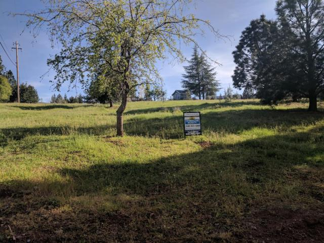 1961 Lyons Creek Court, Cool, CA 95614 (MLS #18024742) :: The Yost & Noble Real Estate Team